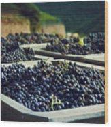 Juicy Grapes Of Autumn. Rotwein Wanderweg Wood Print