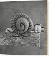 Julia Snail Wood Print by Anne Geddes