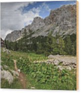 Julian Alps Wood Print
