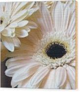 Julia's Daisy's Wood Print