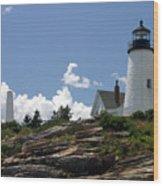 July 2005 At Pemaquid Point Light Wood Print