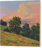 July Thunderhead Wood Print