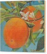 Jumelles Orange Wood Print