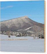 Jump Mountain Wood Print