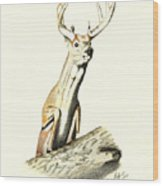 Jumping Buck Wood Print