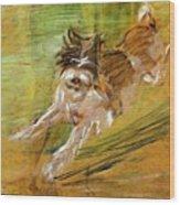 Jumping Dog Schlick 1908 Wood Print