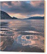 June 22 2010 Wood Print