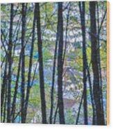 Juneau Wood Print