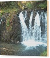 Juneau Waterfall Wood Print