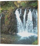 Juneau Waterfall Wood Print