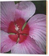 Junes Hibiscus 2 Wood Print