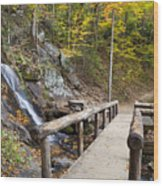 Juney Whank Falls And A Place To Rest Wood Print