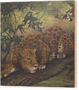 Jungle Cat Wood Print