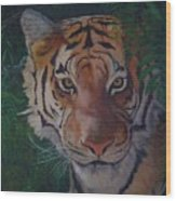 Jungle Eyes Wood Print
