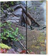 Jungle Falls Wood Print