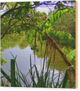 Jungle Garden View Wood Print
