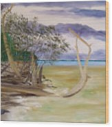 Jungle Gym Mangrove Tree Wood Print