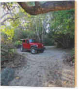 Jungle Jeep Wood Print