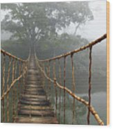 Jungle Journey 2 Wood Print by Skip Nall