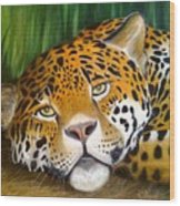 Jungle King Wood Print