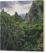 Jungle Mountain Wood Print