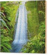 Jungle Waterfall Wood Print