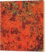 Juniper Berries 1 27 Wood Print