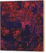 Juniper Berries 1 3 Wood Print