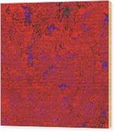 Juniper Berries 1 9 Wood Print