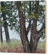 Juniper Wood Print