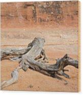 Juniper Log On Sand Wood Print