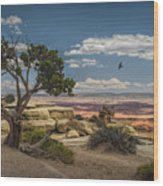 Juniper Tree On A Mesa Wood Print