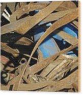 Junk 3 Wood Print