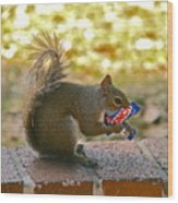 Junk Food Squirrel Wood Print