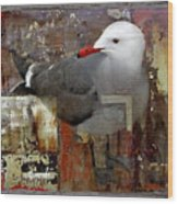 Junkyard Gull Wood Print