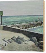Jupiter Inlet Marine Marker One  Wood Print