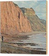 Jurassic Cliffs Wood Print