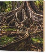 Jurassic Park Tree Trailing Root Wood Print