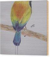 Juruva Bird Wood Print