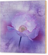 Just A Lilac Dream -3- Wood Print by Issabild -