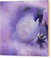 Just A Lilac Dream -4- Wood Print by Issabild -