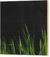 Just A Little Grass Wood Print