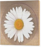 Just A Lonely Flower On Canvas Wood Print