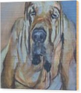 Just Another Magic Bloodhound Wood Print