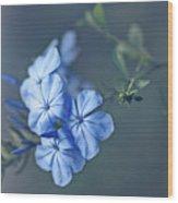 Just Feeling Blue Wood Print