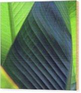Just Leaves Wood Print