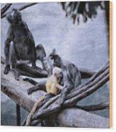 Just Monkeying Around Wood Print