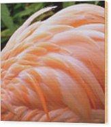 Just Peachy Wood Print