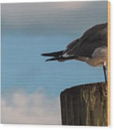 Just Standing On The Dock Wood Print