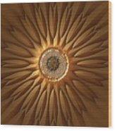 Jyoti Ahau 210 Wood Print